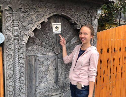 Development Support for Transylvania: Volume 6 – KAROLIN LAAS – 6 Months Volunteering in Romania