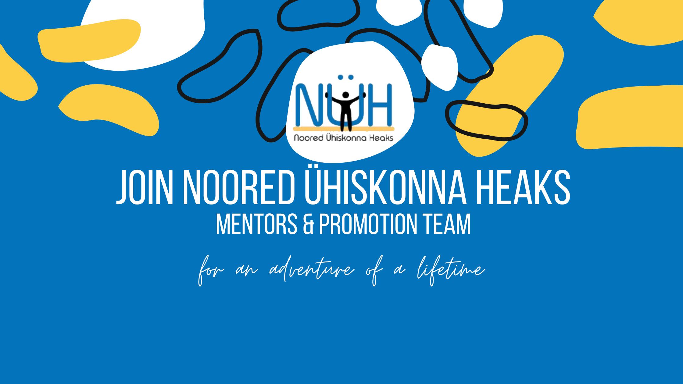 nyh summer days promotion mentors volunteers eesti estonia